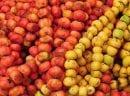 Dr. Ender Saraç Hünnap Meyvesinin faydalarını Anlattı